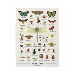 Prosop Gift Republic Insects