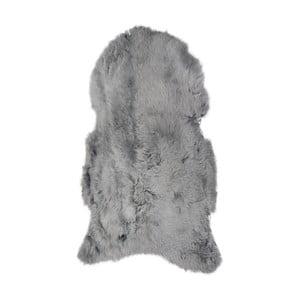 Světle šedá ovčí kožešina s krátkým chlupem, 100x60cm