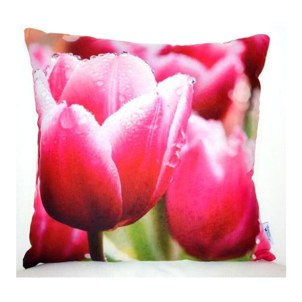 Polštář Tulip, 42x42 cm