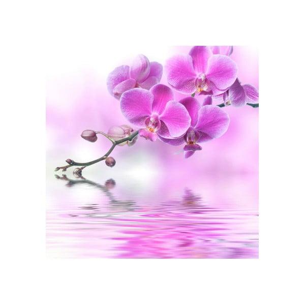 Obraz na skle Orchidej I, 20x20 cm