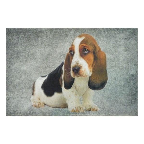 Předložka Basset Puppy 75x50 cm