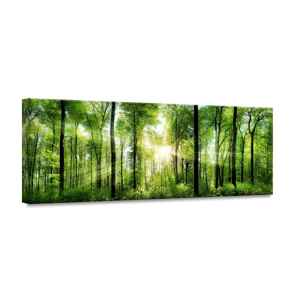 Obraz Styler Glasspik Nature Sunlight 50 x 125 cm