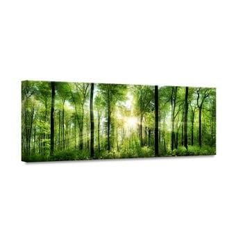 Tablou Styler Glasspik Nature Sunlight, 50 x 125 cm