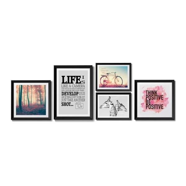 Life 5 db-os képszett - Tomasucci