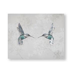 Obraz Graham & Brown Hummingbirds, 50 x 40 cm