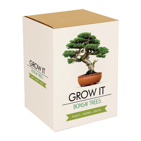 Set grădinărit cu semințe de bonsai Gift Republic Bonsai Trees