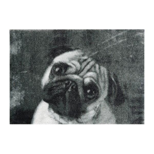 Szara wycieraczka Hans Home StateMat Dog, 50x75 cm