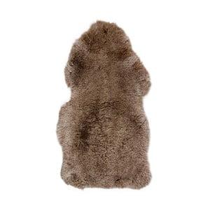 Ovčí kožešina s krátkým chlupem Arctic Fur Taupe, 100x60cm