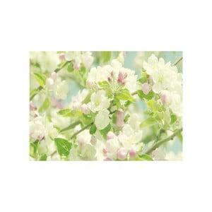 Obraz Na jaře, 45x70 cm