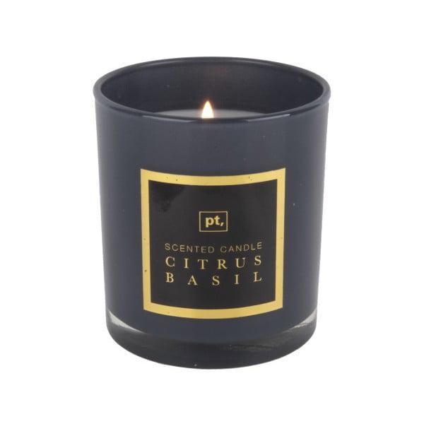 Sviečka s vôňou citrusu a bazalky PT LIVING Scented Candle, doba horenia 35hodín