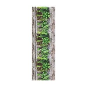 Vysoce odolný běhoun Webtappeti Aromatica, 58x280cm