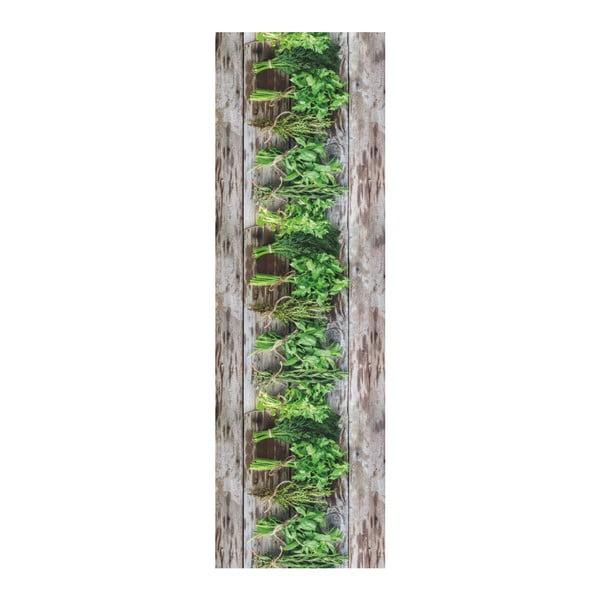 Hnědo-zelený běhoun Floorita Aromatica, 58 x 190 cm