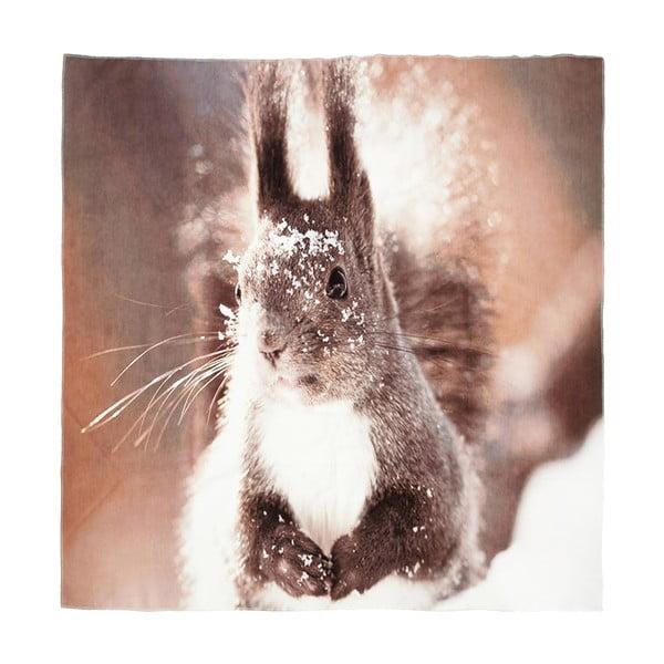 Deka Squirrel, 150x130 cm