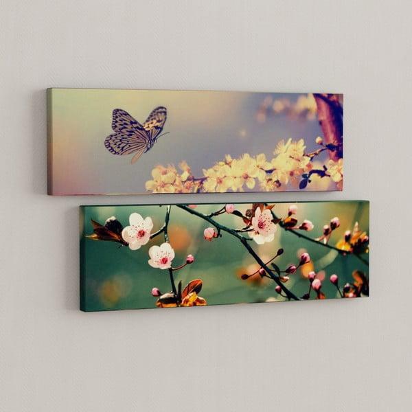 Sada 2 obrazů Motýl s květy