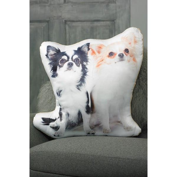 Pernă cu imprimeu Adorable Cushions Chihuahua