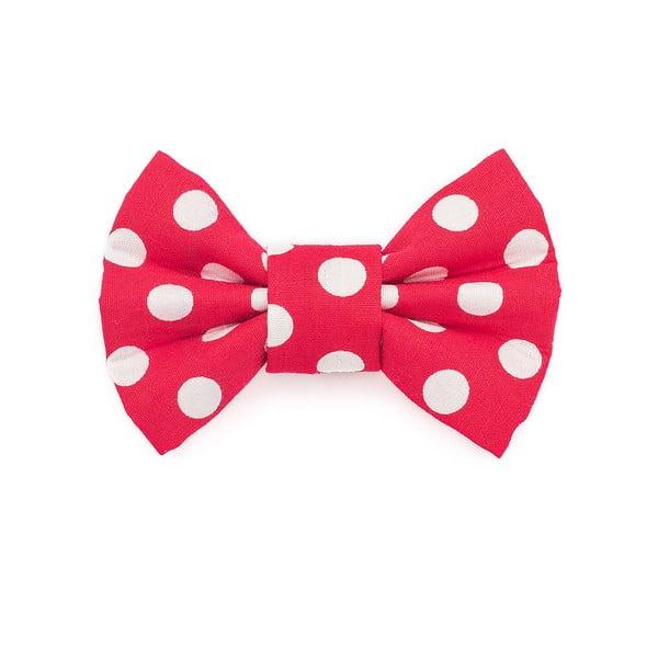 Červený charitativní psí motýlek s velkými puntíky Funky Dog Bow Ties, vel. M