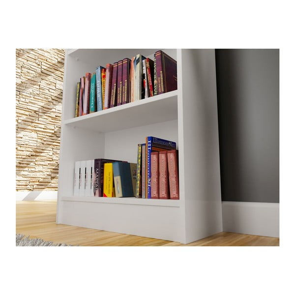 Knihovna Sardunya White