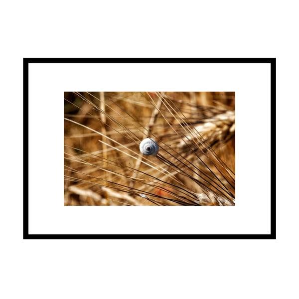 Na výletě, autorská fotografie Borise Stojanova (černý rám)