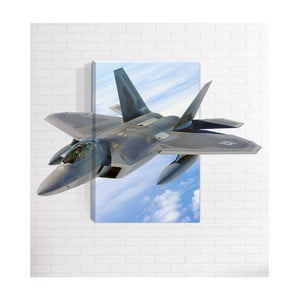 Nástěnný 3D obraz Mosticx Fighter, 40 x 60 cm