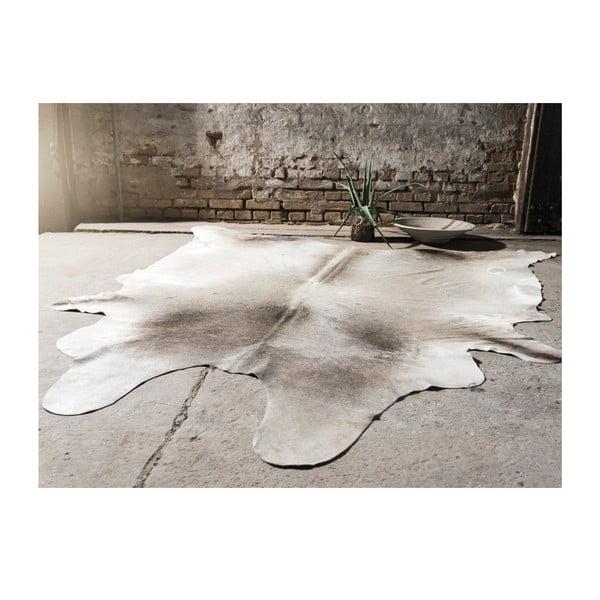 Kožešina z argentiské krávy Black White, 360x160 cm