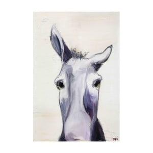 Obraz Marmont Hill Donkey, 45x30cm