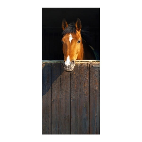 Tapeta na dveře Horse