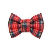 Červeno-zelený károvaný charitativní psí motýlek Funky Dog Bow Ties, vel. S