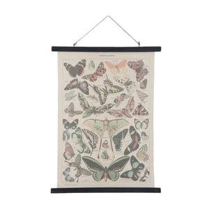 Plakát Clayre & Eef Butterflies