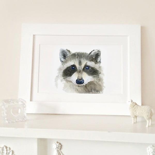 Plakát Raccoon A3