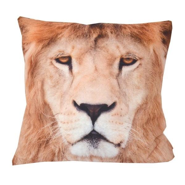 Polštář Animals Lion, 42x42 cm