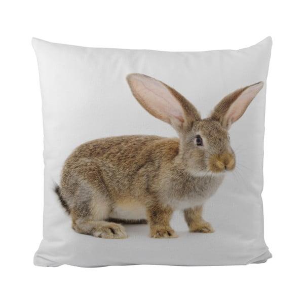 Polštář This Bunny, 50x50 cm