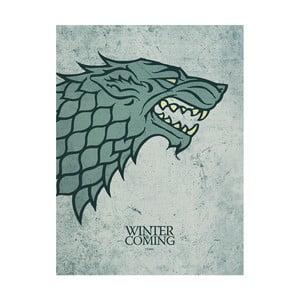 Obraz Pyramid International Game of Thrones Stark, 60 x 80 cm