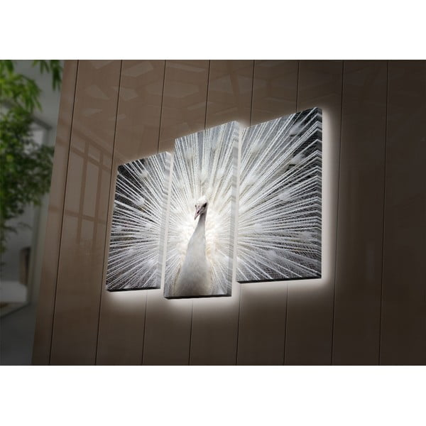 Podsvícený 3dílný obraz Peacock