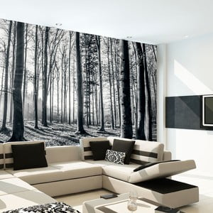 Velkoformátová tapeta In Forest, 315x232 cm