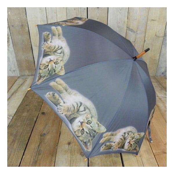 Deštník Tabby Laying