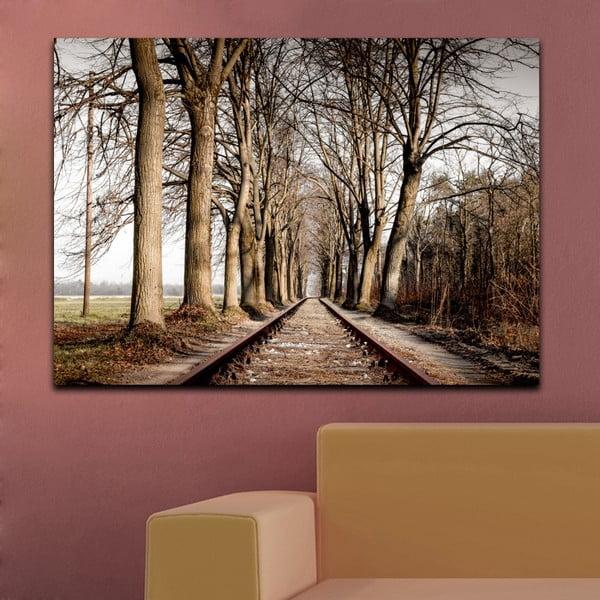 Obraz Na cestě, 70x100 xm