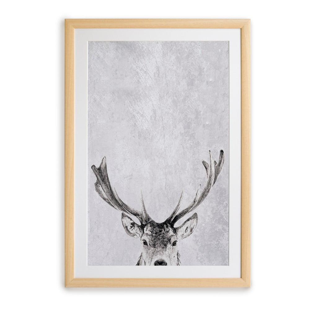 Nástěnný obraz v rámu Surdic Deer, 30 x 40 cm