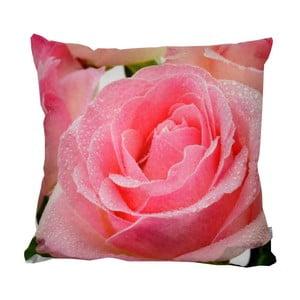 Polštář Rose, 42x42 cm