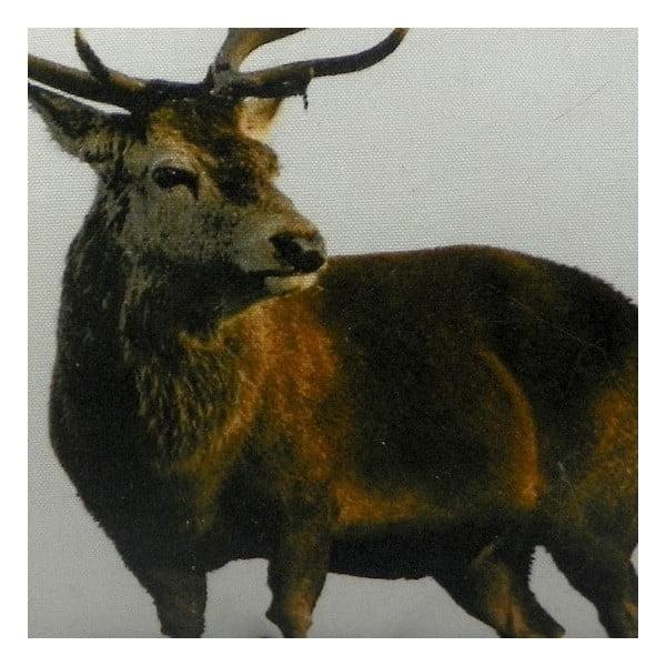 Polštář Deer 50x35 cm