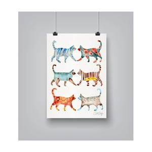 Poster Americanflat Cat Collection, 30 x 42 cm