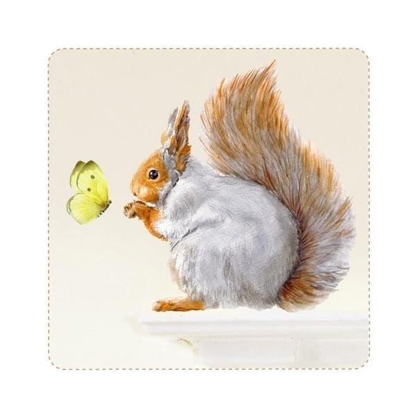 Znovu snímatelná samolepka Grey Squirrel, 32x30 cm