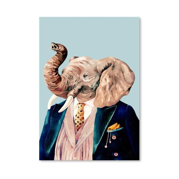 Plakát Elephant, 42x60 cm