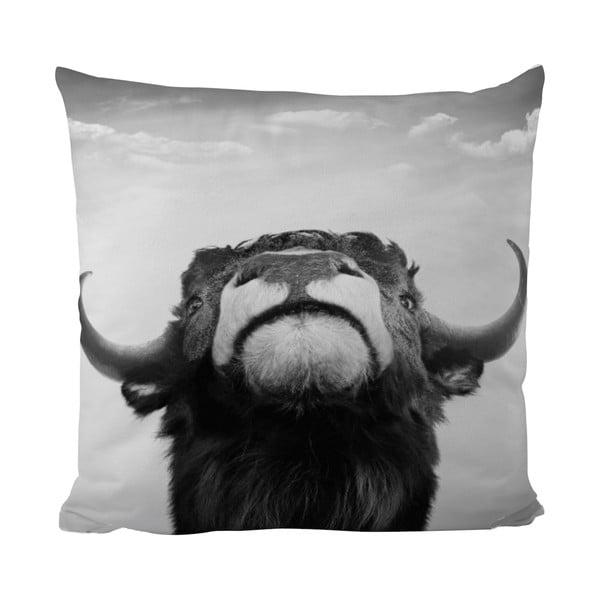 Polštářek Black Shake The Bull, 50x50 cm