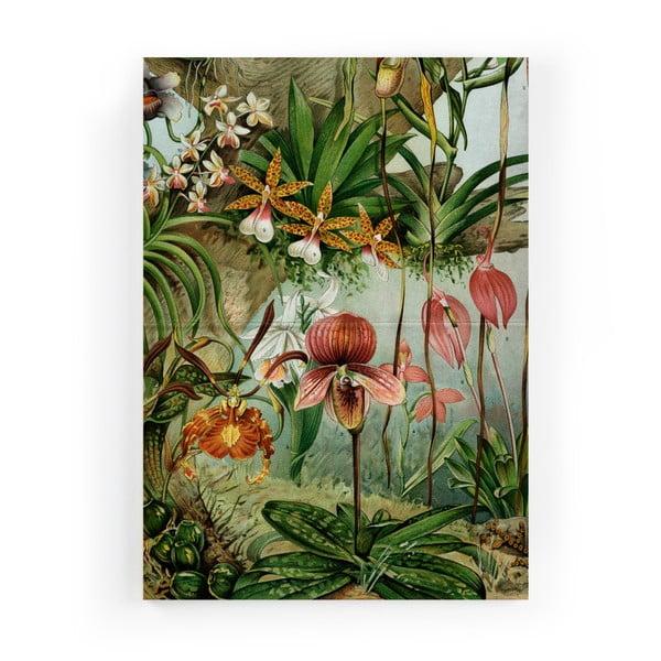 Tablou Velvet Atelier Potion, 50 x 70 cm