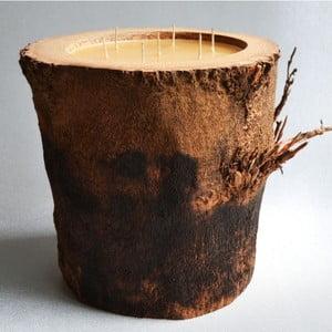 Palmová svíčka Legno s vůní medu, 160 hodin hoření