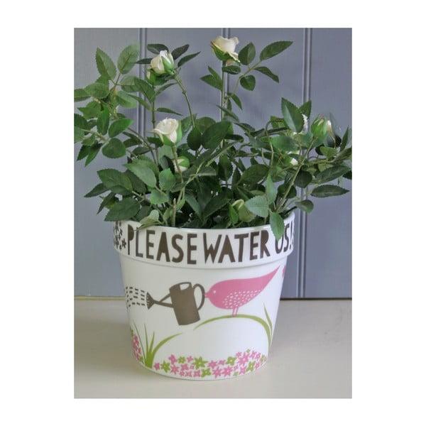 Květináč Please Water Us, modrý