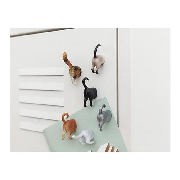 Sada 6 magnetů na lednici s motivy koček Kikkerland