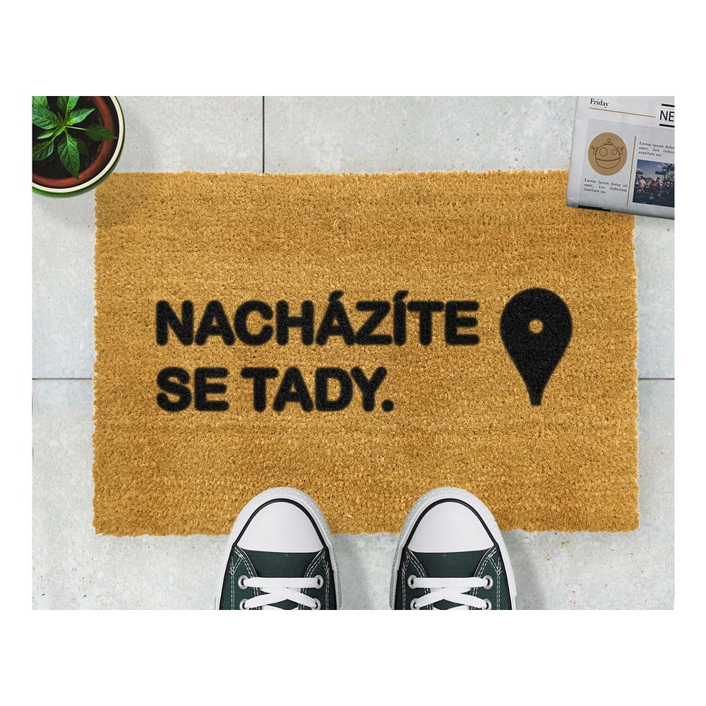 Rohožka Artsy Doormats Tady, 40 x 60 cm