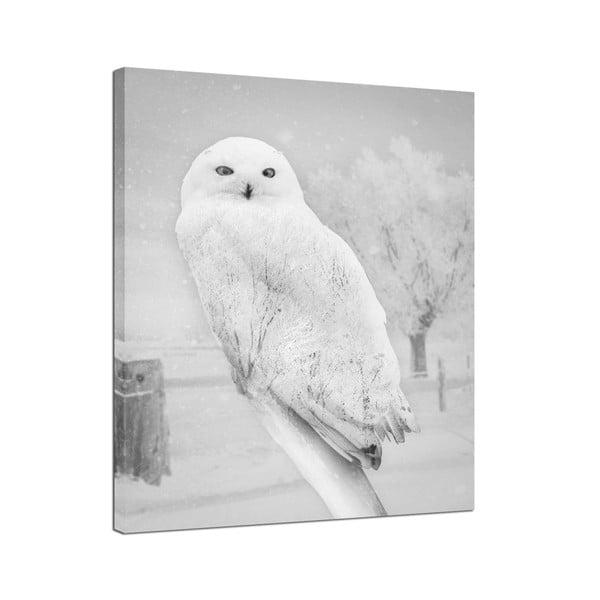 Canvas Nordic Owl fali kép, 75 x 100 cm - Styler