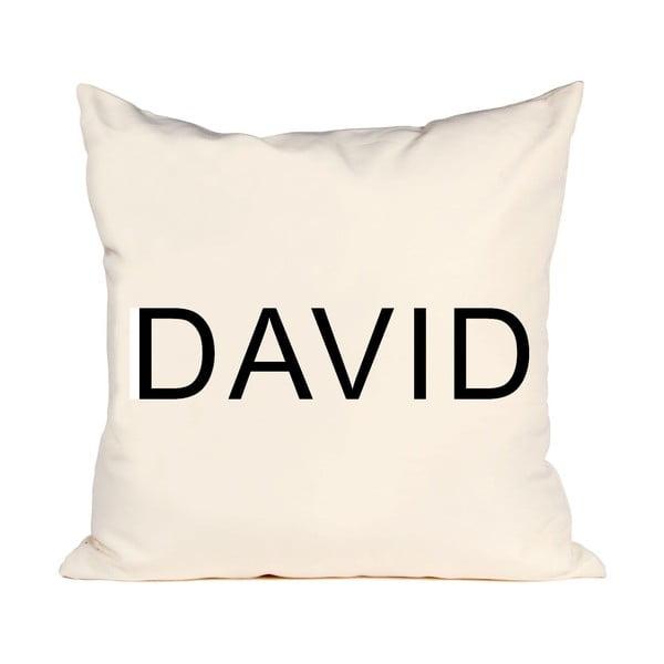 Polštář David, 50x50 cm